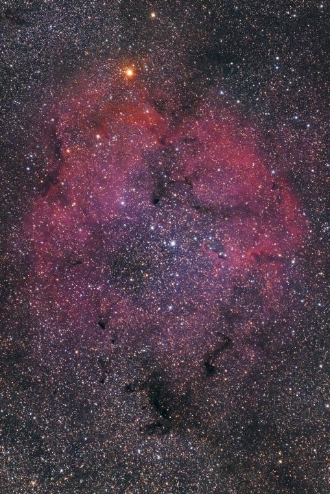 IC1394_151014_01.jpg